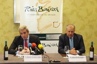 Rías Baixas calificó un 12% más de vino en 2014