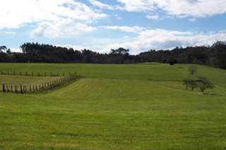 Aprobada la Lei de Mellora da Estrutura Agraria de Galicia
