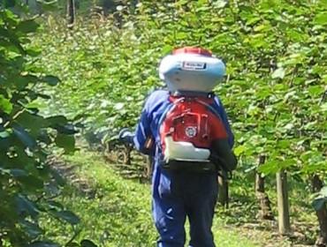 Curso básico de aplicador y manipulador de productos fitosanitarios en Ribadeo