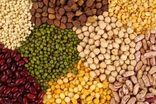 Los expertos prevén que la próxima PAC primará los cultivos de leguminosas