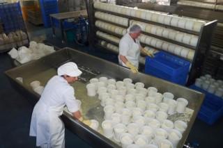 Queinaga, un ejemplo de valorizar la leche en la explotación