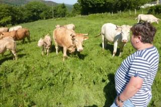 Encuesta a ganaderos y agricultores sobre cómo les afecta el coronavirus en su actividad