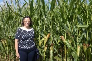 El abonado con residuos ganaderos en cultivos forrajeros es más competitivo