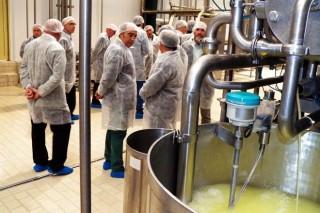 El sector lácteo, en cifras