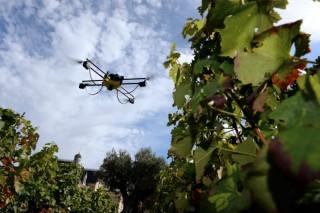 Jornada sobre nuevas tecnologías aplicadas al sector vitivinícola
