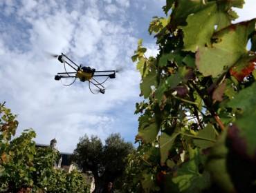 Jornadas formativas en Ourense sobre digitalización en la viticultura