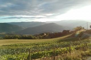 136 ganaderos y agricultores lucenses recibirán ayudas de la Diputación para recuperar 582 hectáreas abandonadas