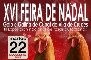 "Vila de Cruces acoge este martes la ""XVI Feira de Nadal do Galo de Curral"""