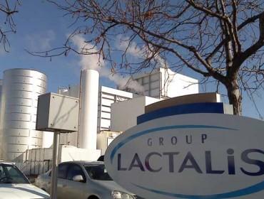 El Grupo Lactalis prevé que en 2021 todas sus ganaderías estén certificadas en bienestar animal