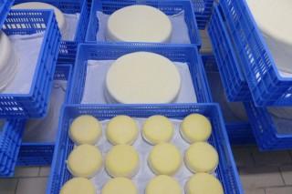 Curso gratuíto de elaboración de quesos y de derivados lácteos