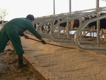 Curso sobre gestión de personal en ganaderías
