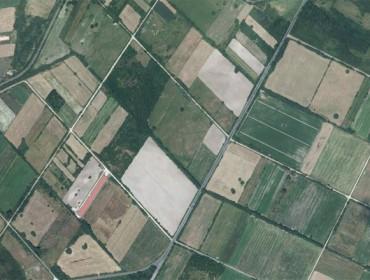 «Las cooperativas podrían ser un mecanismo para reorganizar las tierras de sus socios»