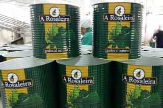 A Rosaleira, grelos de Galicia que saben como los de casa