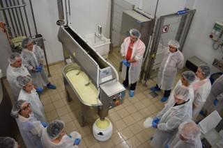 Curso sobre ingredientes y aditivos en la industria láctea y alimentaria