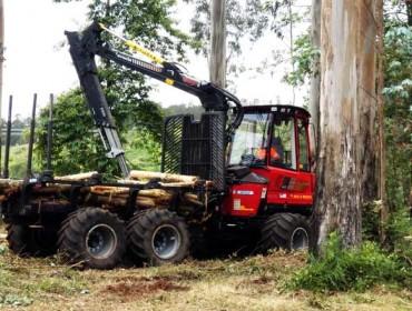 Cursos de certificación forestal y prevención de riesgos con maquinaria