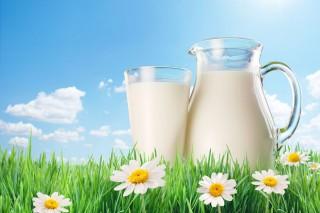 Jornada de apoyo al consumo de leche fresca