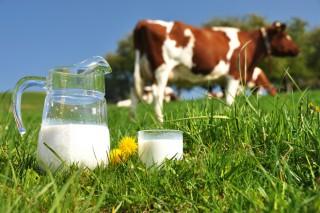 Perspectivas del mercado lácteo en tiempos del coronavirus