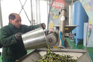 Ourense acogerá en marzo una amplia jornada sobre «Las bondades del consumo de aceite de oliva virgen»