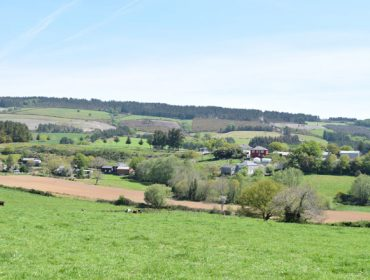 Coronavirus: La Comisión Europea acuerda nuevas medidas de apoyo a los agricultores y ganaderos