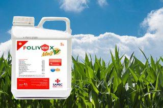 Foliveex Maíz: fitonutriente para un mejor desarrollo del maíz forrajero