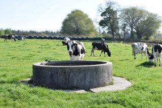 Listado de beneficiarios de las ayudas para lo suministro de agua a las ganaderías