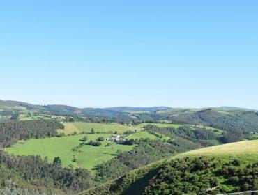 Galicia perdió 60.000 hectáreas de tierras de cultivo entre el 2012 y el 2021