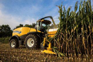 Resultados por comarca de la cosecha de maíz forrajero 2018 en Galicia
