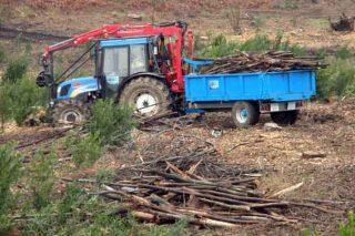 Cursos de certificación forestal, gestión de montes vecinales y prevención en el uso de maquinaria