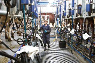 Coronavirus: ¿Cómo afecta el estado de alarma a ganaderos y agricultores?