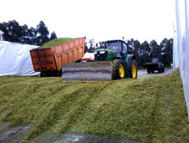 Diez preguntas sobre el silo de maíz