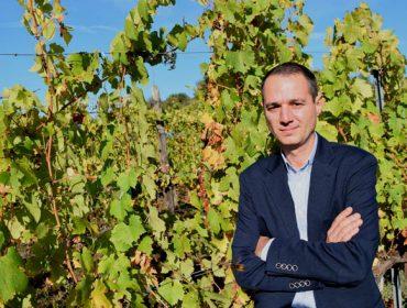 """""""Mi gran temor de la crisis del Covid-19 en el sector del vino es  el abondono de los viticultores"""""""