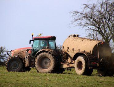 Así regulará Galicia la gestión de los purines ganaderos en los próximos años