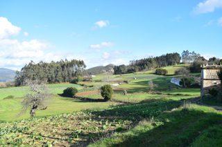 Ayudas para maquinaria y equipamientos en actividades no agrarias en el rural