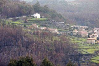 ¿Qué va a suceder con los montes vecinales con convenio con la Xunta?