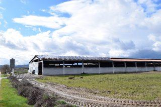 Las granjas con energías renovables por fin podrán vender los excedentes de electricidad