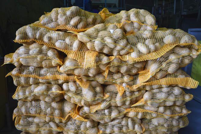 Critican los bajos precios para los productores de patata de A Limia en el canal Mercaproximidade