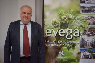 """""""El vino español puede quedarse fuera del mercado si no apuesta por variedades de vid resistentes a mildiu y oídio"""""""
