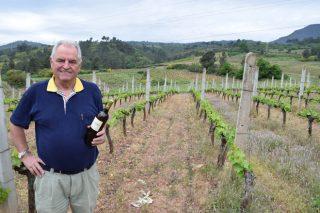 """""""Lo más importante en un vino es vendimiar la uva en el momento óptimo"""""""