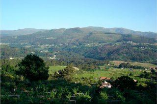 Valtea, la pasión por el albariño al estilo borgoñón