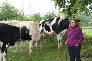 Casa Paulos: «Estábamos produciendo leche en ecológico pero sin cobrar por ello»
