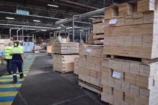 Buenas perspectivas en el sector de la madera para el primer semestre de 2021
