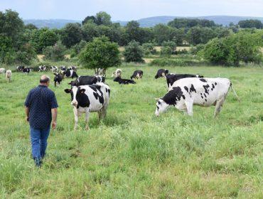 ¿Donde es más rentable producir leche en la Unión Europea?