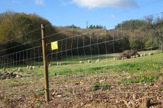 Curso sobre cierres de parcelas agrícolas y ganaderas