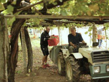 Tráfico inicia una campaña orientada a los vehículos agrícolas