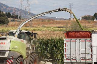 Así gestiona COVAP los forrajes para alimentar a más de 15.000 vacas de leche
