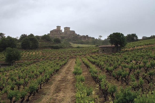 Jornada de puertas abiertas de la Ruta do Viño de Monterrei