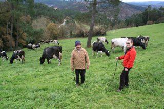 «Me gusta que las vacas salgan al aire libre y disfruten de los pastos»