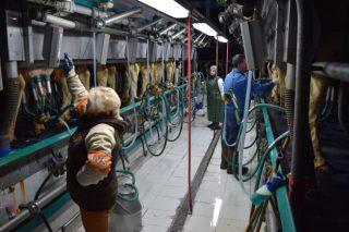 Recomendaciones para reducir la factura eléctrica en una granja