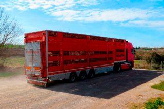 Curso en Friol sobre bienestar animal en el transporte