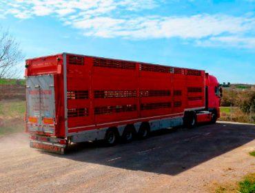 El Gobierno cambia la normativa de transporte de animales ante la crisis del coronavirus